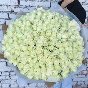 Букет 201 белая роза R498
